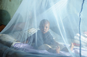 Malaria prevention, Kenya. PHOTO: Thomas Omondi / Department for International Development