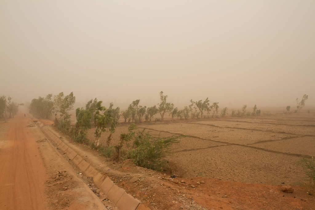Dusty wind at the height of the dry season in Naimey, Niger. Francesco Fiondella/IRI