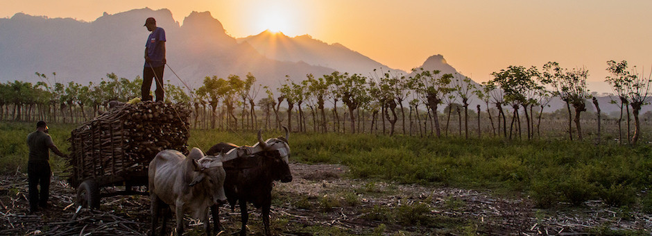 honduras-sunset