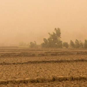A dust storm in Niamey, Niger signals the start of the rainy season. May 2012. Francesco Fiondella/IRI