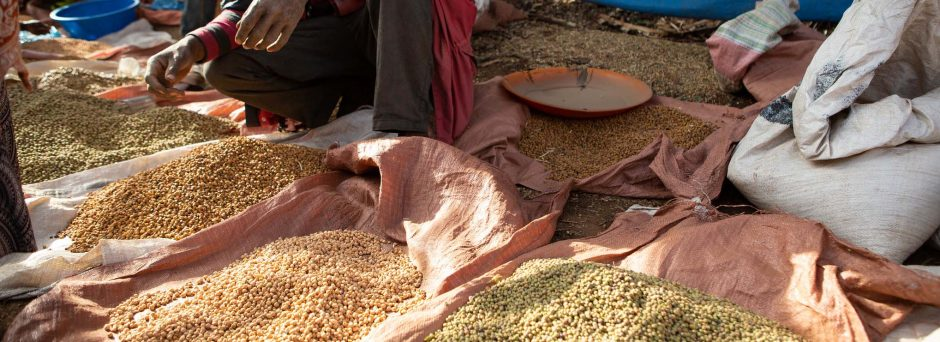 A photograph of several pink canvas bags of different types of grain on the ground at a market in Hosaena, Ethiopia.