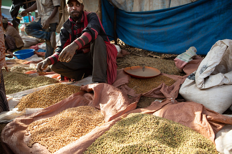 A photograph of an Ethiopian man selling different kinds of grains at a Saturday market in Hosaena, Ethiopia. The man wears a baseball cap and a red and black striped shirt. He crouches in front of four pink canvas sacks filled with different types of grain.