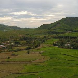 agricultural landscape in Vietnam